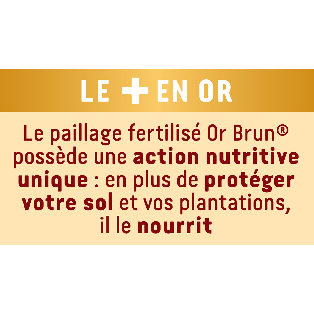 Paillage fertilisé ornemental Or Brun 50L